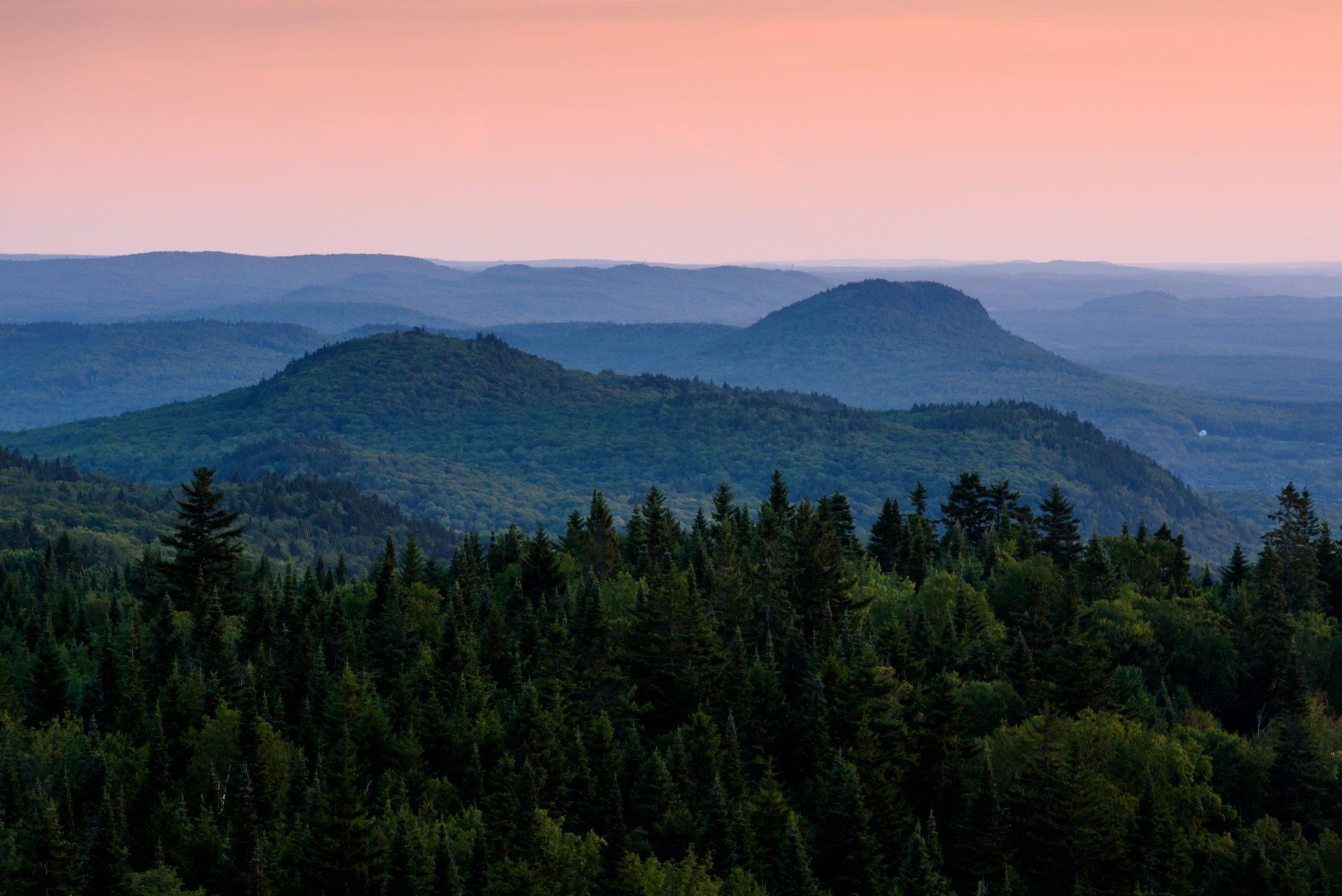 Paysage forestier dans Sainte-Félicité