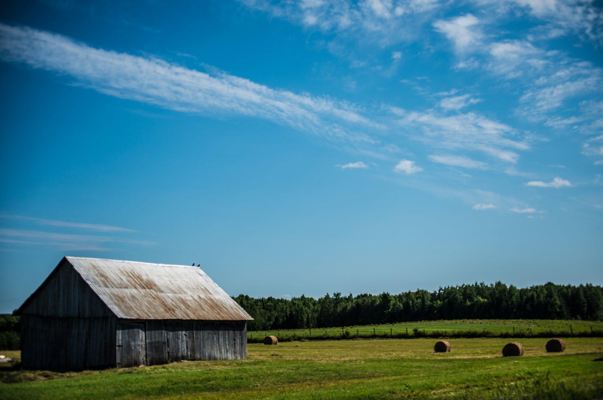 Paysage agricole dans Sainte-Félicité